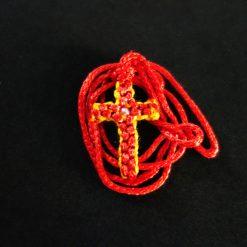 DSC02721 Κόκκινο πορτοκαλί
